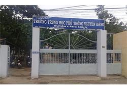 Tư vấn tuyển sinh Đại học năm 2017 Trường THPT Nguyễn Đáng